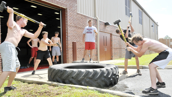 New Andalusia baseball coach Tyler Dent (center) keeps time during workouts Wednesday morning. Dent will take over the Bulldogs' program next spring. |                                                                         Andrew Garner/Star-News
