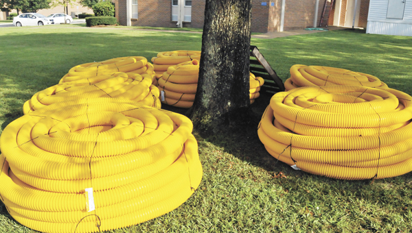 Coils of yellow fence protectors lie in wait at LBWCC recently.   Andrew Garner/Star-News
